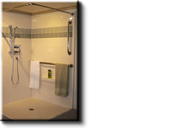 BATHROOM REMODELS AND MODIFICATIONS